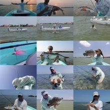 Fishing-by-Irwin-2