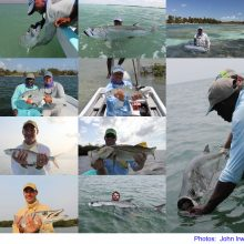 Fishing-by-Irwin
