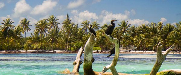 Looking into Long Caye. Photo: M. Nowak