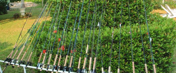 Rods clean & ready